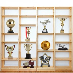shelves-and-trophies-284x284