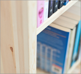 Shelf Detail 2